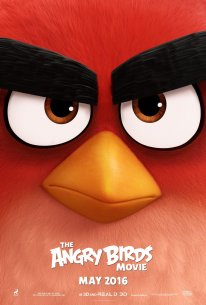The Angry Birds Movie poster