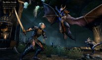 The Elder Scrolls Online Daedra Slayer