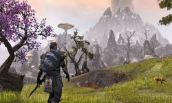 The Elder Scrolls Online fields