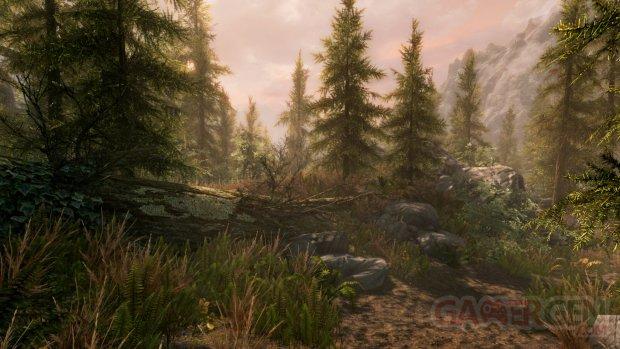 The Elder Scrolls V Skyrim Special Edition 13 06 2016 screenshot (3)