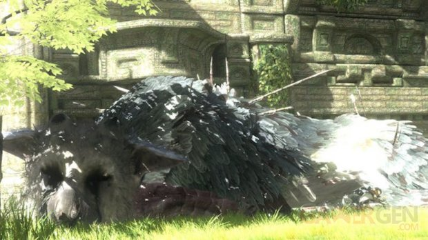 The Last Guardian 15.11.2013.