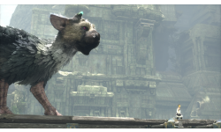 The Last Guardian (7)