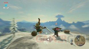 The Legend of Zelda Breath of the Wild images (22)