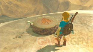 The Legend of Zelda breath of the Wild images (6)