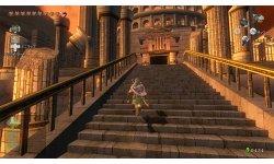 The Legend of Zelda Twilight Princess HD  (15)