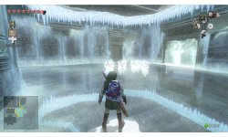 The Legend of Zelda Twilight Princess HD  (21)