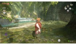 The Legend of Zelda Twilight Princess HD  (8)