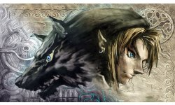 The Legend of Zelda Twilight Princess HD test impressions verdict note