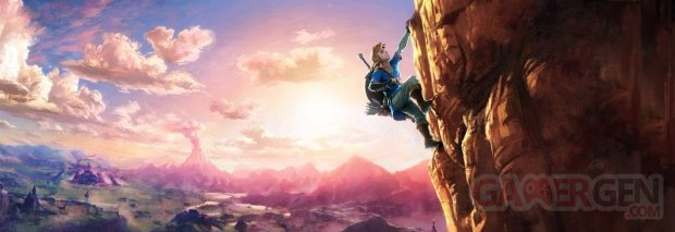 The Legend of Zelda Wii U NX 12 06 2016 art