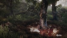 The Vanishing of Ethan Carter_ScreenShot_04
