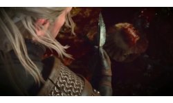 The Witcher 3  trailer E3 2014