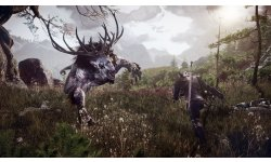 The Witcher 3 Wild Hunt 001