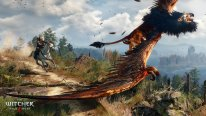 The Witcher 3 Wild Hunt 26.01.2015  (1)