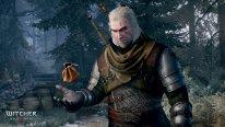 The Witcher 3 Wild Hunt 26.01.2015  (2)