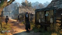 The Witcher 3 Wild Hunt 26.01.2015  (3)