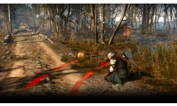The Witcher 3 Wild Hunt 29 04 15 07