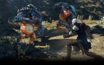 The Witcher 3 Wild Hunt 29 04 15 08