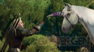 The Witcher 3 Wild Hunt Blood and Wine image screenshot 6
