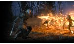 the witcher 3 wild hunt cd projekt red extension developpement