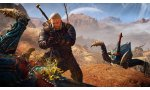 the witcher 3 wild hunt cd projekt red images screenshots