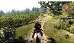 The Witcher 3 Wild Hunt image screenshot 13