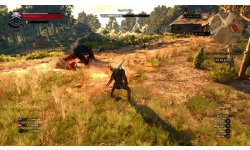 The Witcher 3 Wild Hunt image screenshot 2