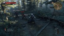 The Witcher 3 Wild Hunt image screenshot 6