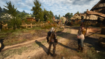 The Witcher 3 Wild Hunt  patch 1.01  (5)