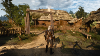 The Witcher 3 Wild Hunt  patch 1.01  (6)