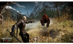 The Witcher 3 Wild Hunt Traque Sauvage 14 06 2014 screenshot 14