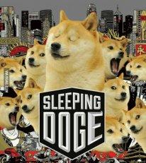 Trolls de la semaine sleeping doge