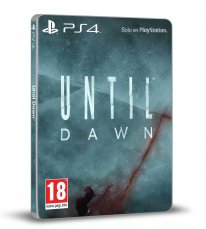 Until Dawn jaquette 2