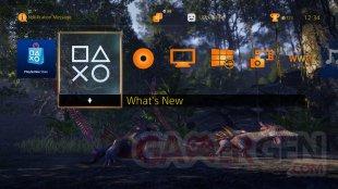 Wander 31 05 2015 thème PS4