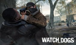 watch dogs 29.05.2014