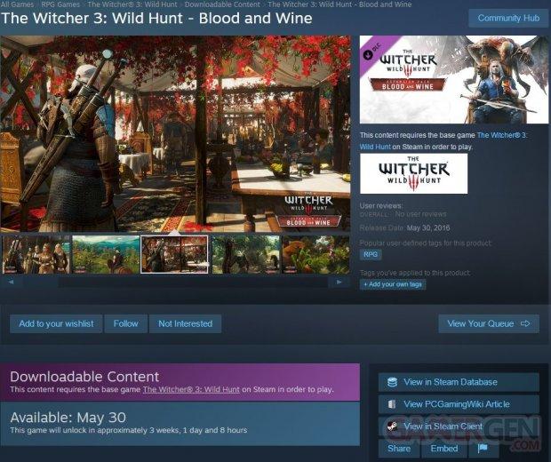 Witcher 3 Wild Hunt DLC Extension Blood Wine Date Sortie Steam