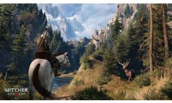 witcher 3 wild hunt image cerf 22 03 15