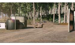 WRC 5 Polo R
