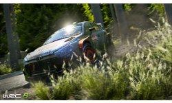 WRC 6 08 2016 screenshot (3)