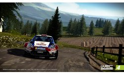 WRC4 PR SCREENSHOT1 01