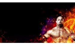 WWE 2K17 banner