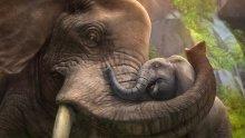 ZooTycoon_Elephants