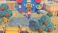 Animal Crossing New Horizons 01 18 02 2021