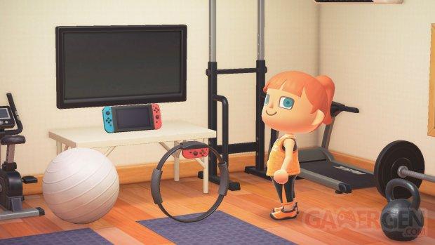 Animal Crossing New Horizons 01 25 09 2020