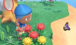 Animal Crossing New Horizons head