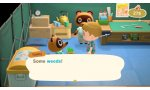 animal crossing new horizons prolonge vacances formule evasion ile deserte presentee video