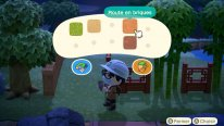 Animal Crossing New Horizons test 08 16 03 2020