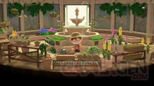 Animal Crossing New Horizons test 10 16 03 2020