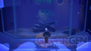 Animal Crossing New Horizons test 11 16 03 2020