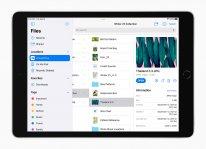 Apple iPad 10 2 inch Files 09142021