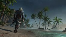 Assassin\'s Creed IV Black Flag 22.08.2013 (3)
